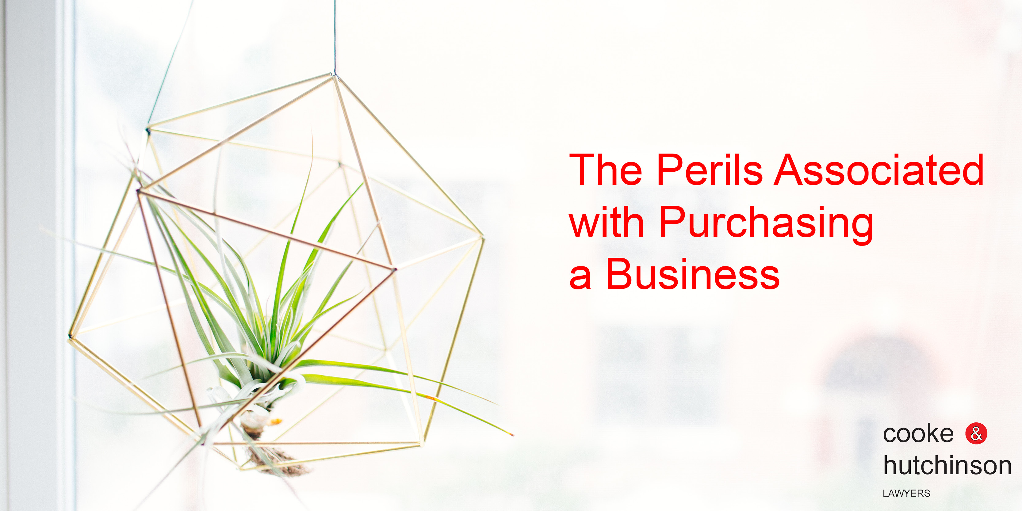 Perils Associated with Purchasing a Business